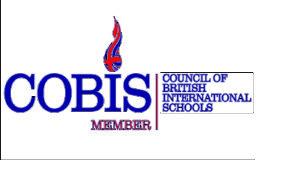 Логотип COBIS макет виз фото